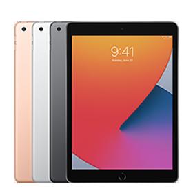 iPad 10.2 (8 gen)