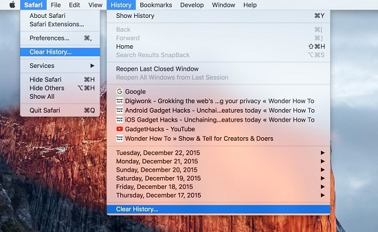 Clear history on Mac OS X